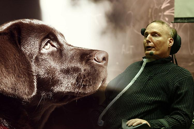Disabili DOC – Cani e Disabili