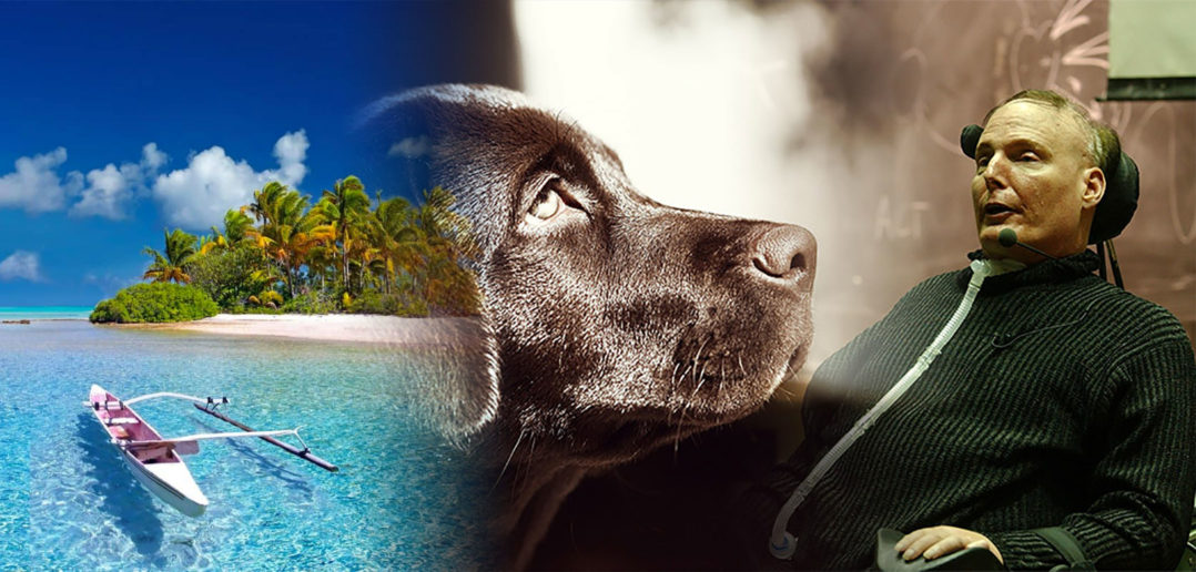 Disabili DOC – Con l'arrivo dell'estate pensiamo ai nostri amici Cani ma ci dimentichiamo dei Disabili e delle loro necessità, perché?